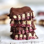 Raw Vegan Raspberry/Coconut Squares